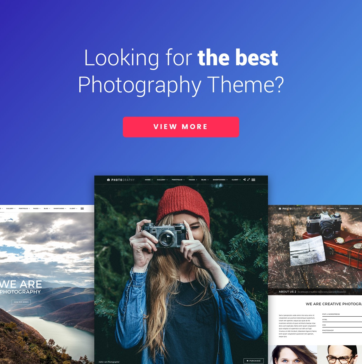 Themeforest | Titan | Photography Free Download free download Themeforest | Titan | Photography Free Download nulled Themeforest | Titan | Photography Free Download